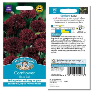 Mr. Fothergill's Seeds - Cornflower Black Ball