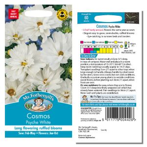 Mr. Fothergill's Seeds - Cosmos Psyche White
