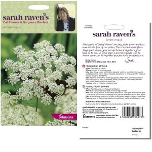 Sarah Raven's Ammi majus Seeds by Johnsons