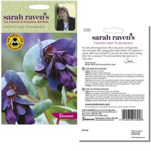 Sarah Raven's Cerinthe major 'Purpurascens' Seeds by Johnsons