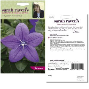 Sarah Raven's Platycodon 'Florists Blue' Seeds by Johnsons