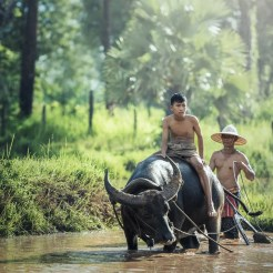 water-nature-forest-outdoor-wilderness-people-1025992-pxhere.com (2)