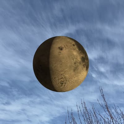 Top of a tree and blue sky with a circle in the middle containing an image of the edge of the moon.