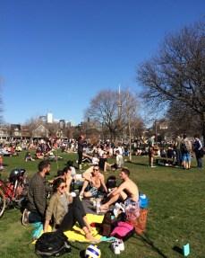 Spring in Trinity Bellwoods Park