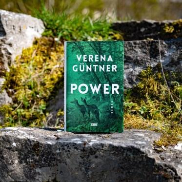 güntner power