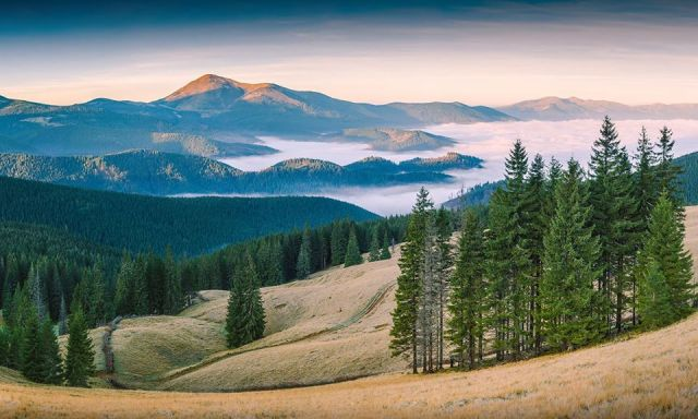 Winning Photos from Wiki Loves Earth Contest 2015