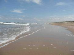 Il Mare del Nord a Knokke Heist