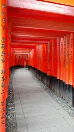 I torii arancioni del Fushimi Inari