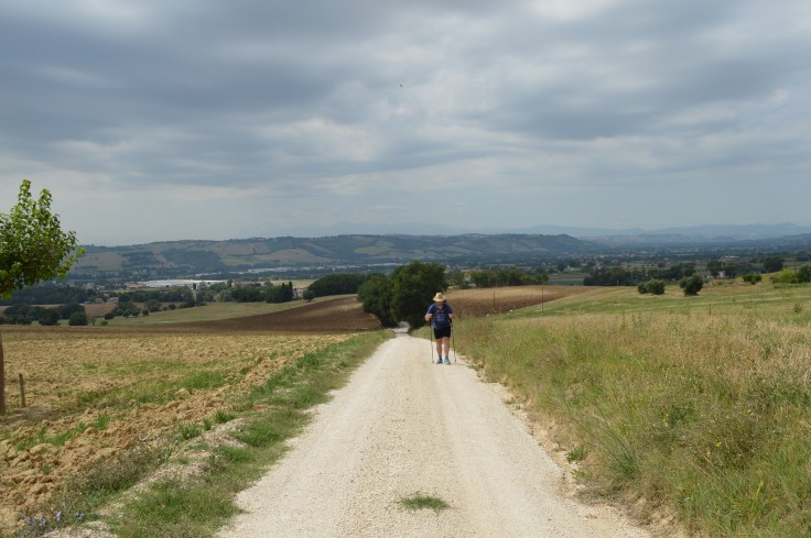 camminando nella campagna marchigiana