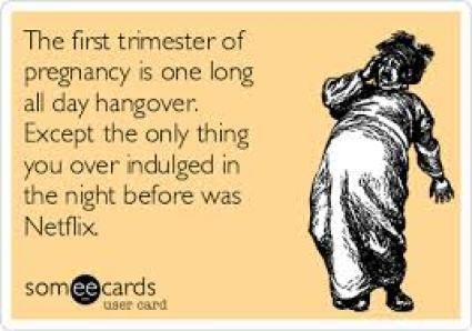 first trimester is like one long all day hangover meme