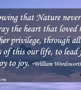 william wordsworth nature quotes