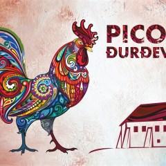"""Program """"Picokijada 2021."""""""