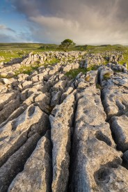 Malham-Scaleber-Jun-2015-0096-noQR