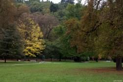 City park / Park miejski