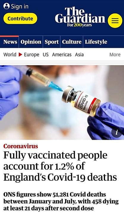 Articol in The Guardian