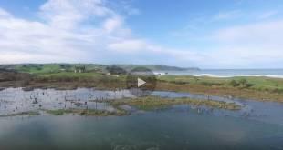 Video Oyambre Cantabria