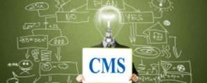 Каква система е CMS?