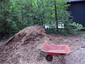 Wheel Barrow and Wood Chips