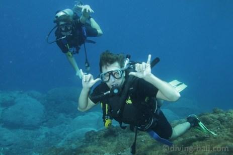 Potápìní na Bali. Dovolená bez kompromisù.