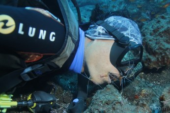 diving-bali-coral-garden-cleaning-station