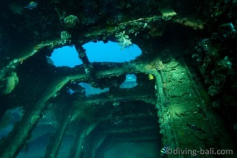 diving-bali-wreck-liberty-tulamben