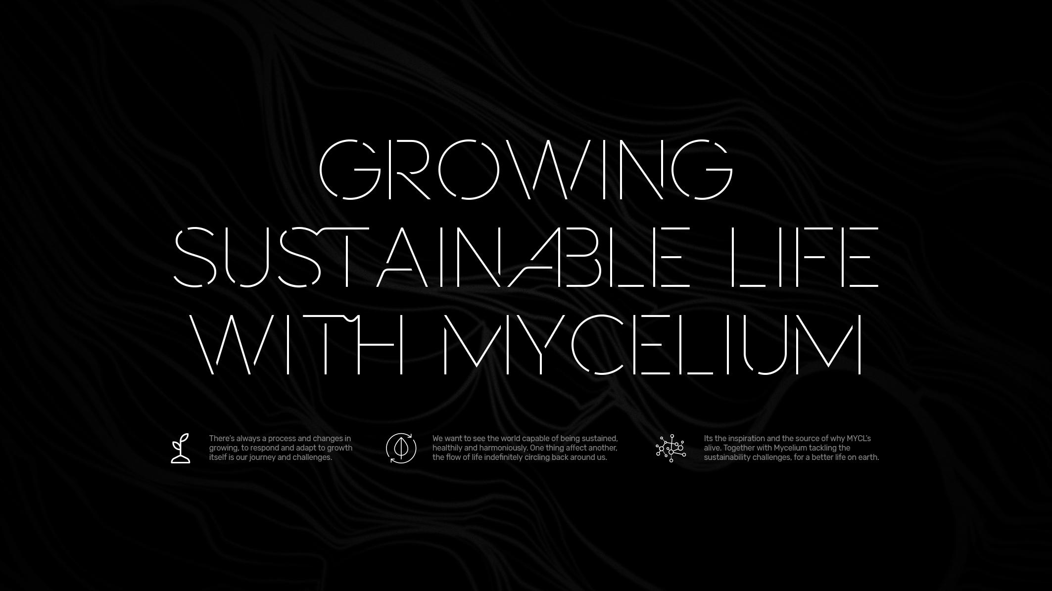 MYCL_process4x
