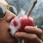 Conoce algunas formas alternativas para fumar cannabis sin utilizar pipas, papel o bongs