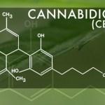 Cosas que debes saber sobre el Cannabidiol (CDB)
