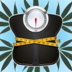 Nuevo estudio demuestra que el consumo de marihuana está vinculado con un menor índice de masa corporal (IMC)