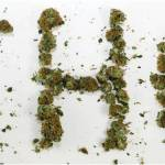 ¿Cuánto tiempo permanece el THC en tu organismo?