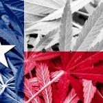 Texas Considerá la Despenalización del cannabis en 2017