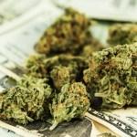Venta de marihuana legal superó los 5,800 millones de dólares en los Estados Unidos durante 2016