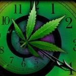 ¿Por qué el cannabis altera nuestra percepción del tiempo?