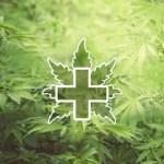 Alemania comienza la prescripción médica de cannabis con receta