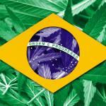 Cannabis fue incluido en la lista de plantas medicinales de Brasil