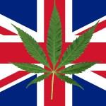 Parlamento Ingles votó unánimemente a favor de un proyecto de ley para legalizar el cannabis medicinal