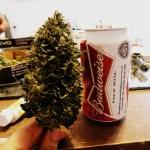 Exejecutivo de Budweiser: Cannabis será como cerveza artesanal