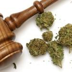 Emiten las primeras reglas del mercado de la marihuana en California