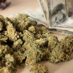 ¿Cuánto cuesta la marihuana en Estados Unidos, Canadá y México?