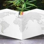 Bélgica avanza hacia la legalización del cannabis terapéutico