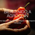 Agrocoin, la criptomoneda mexicana que busca dominar el mercado legal de la marihuana