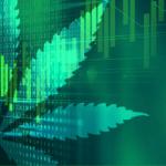 Cómo el big data y la inteligencia artificial articulan la industria del cannabis
