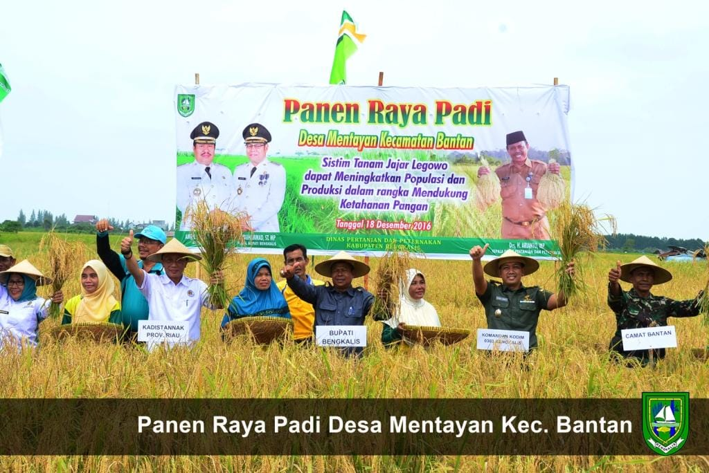 Tingkatkan Kesejahteraan Petani, Pemkab Bengkalis Komitmen Genjot Produksi Pertanian