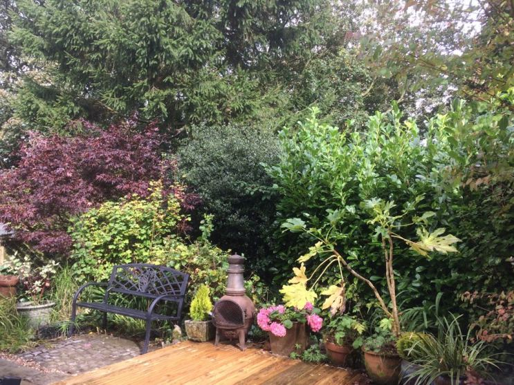 Garden at Pots and Pans Holiday Cottage, Uppermill, Saddleworth