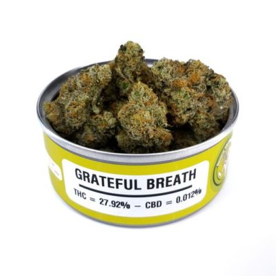 Space Monkey Meds Grateful Breath