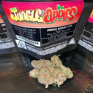 Jungle Boys Jungle Apples