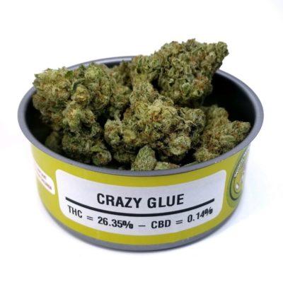 Space Monkey Meds Crazy Glue