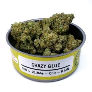 Space Monkey Meds Crazy Glue