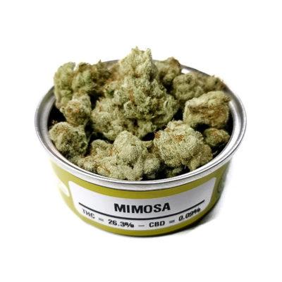 Space Monkey Meds Mimosa