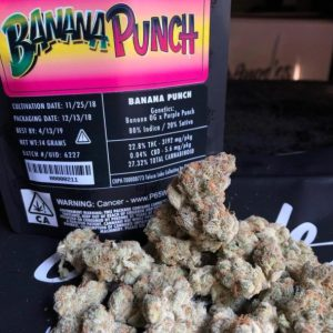 Jungle Boys Banana Punch